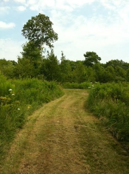 Garden Path to Private Pond, Architect Designed Small Home, Cushing, ME