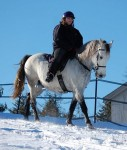 Legend ridden by a young lady in our neighborhood